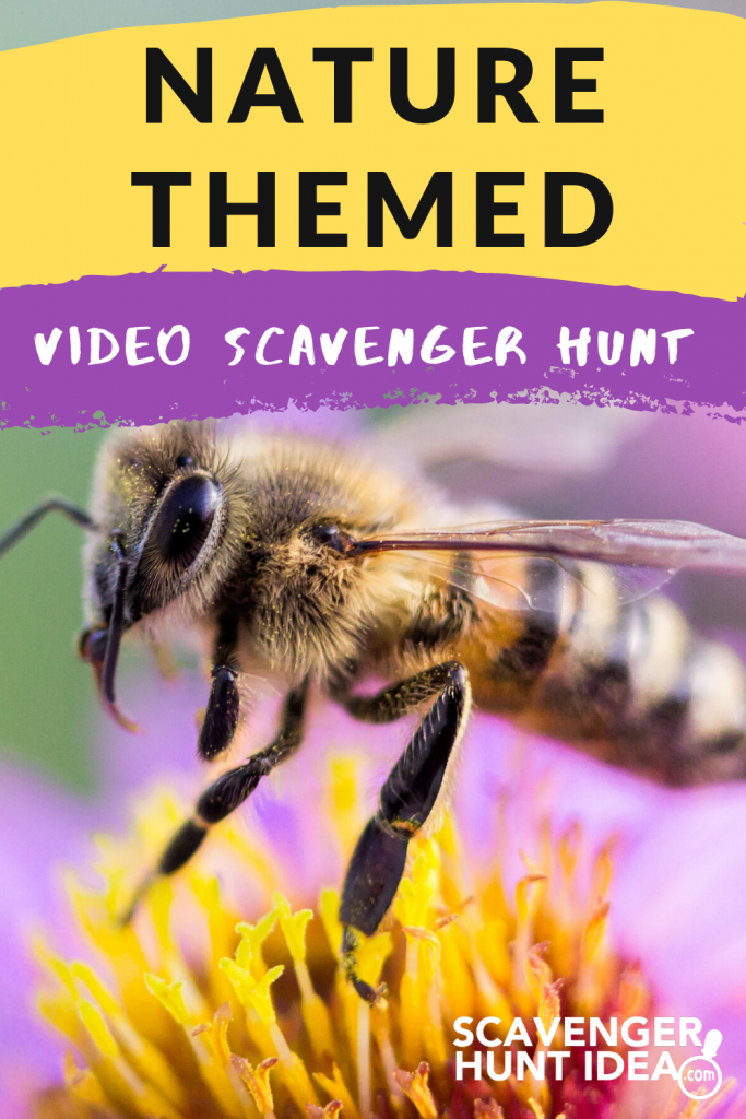 Nature-Themed Video Scavenger Hunt by ScavengerHuntIdea.com